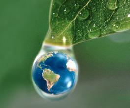 World in a Dewdrop